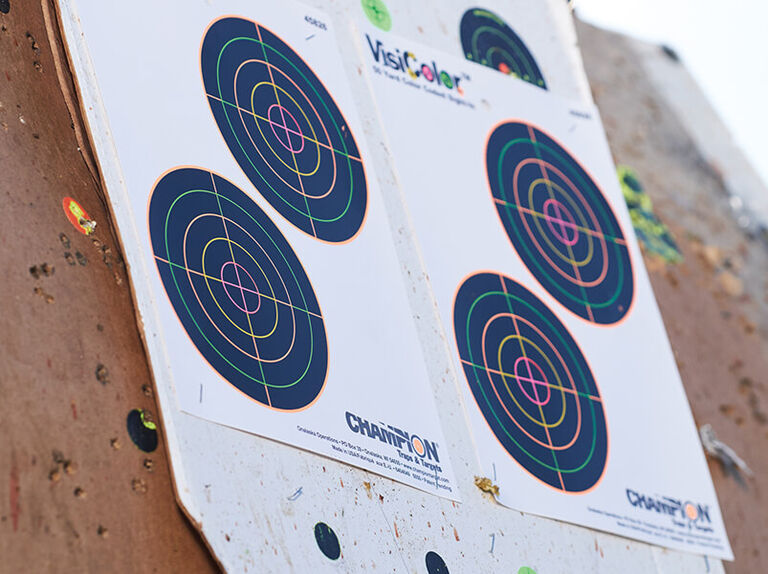 Champion VisiColor Targets mounted on wall